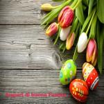 Pasqua copia